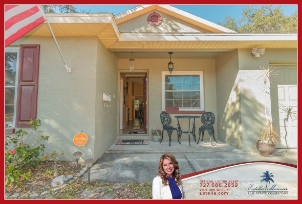 St Petersburg FL Home for Sale