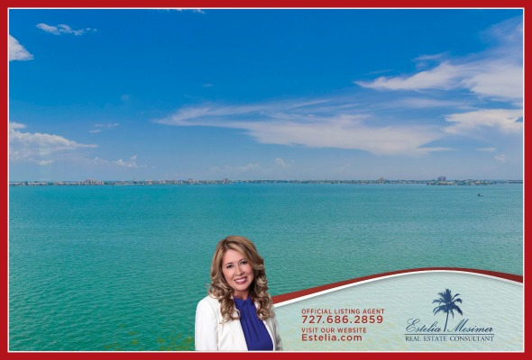 Condo for Sale in St. Petersburg FL