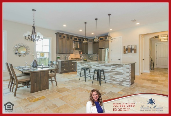 St. Petersburg Homes for Sale