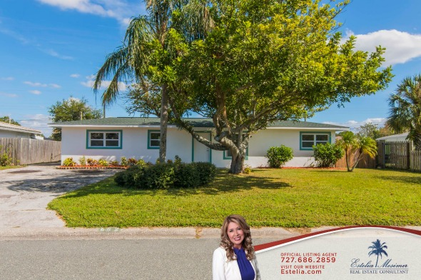 Homes for Sale in St. Petersburg FL