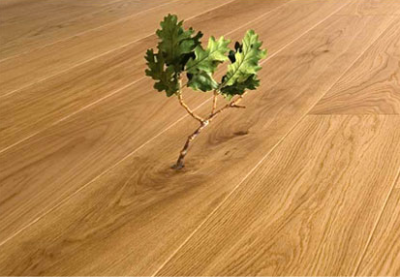 Eco Friendly Carpets And Other Healthy Floor Options St Petersburg