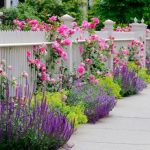 Estelia Mesimer's Real Estate Tips – Curb Appeal Boosters